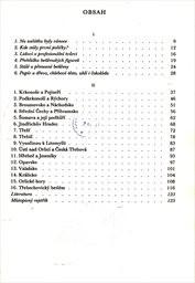 Lidové betlémy v Čechách a na Moravě