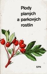 Plody planých a parkových rostlin