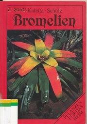 Bromelien