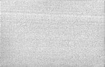 Lodivod dunajský