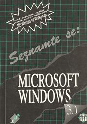 Microsoft Windows 3.1 for Workgroups
