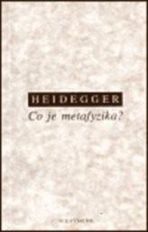 Co je metafyzika?