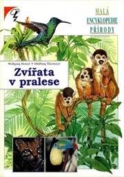 Zvířata v pralese