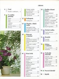 Rok s pokojovými rostlinami