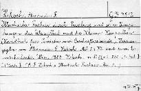 Illustrirter Führer durch Pressburg und seine Umgebungen, das Waagtal und die Kleinen Karpathen