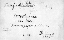 Evropejskij roman v XIX. stoletii.