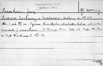 Lidové noviny v království českém r. 1905