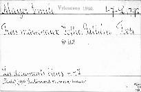 Trois maréchaux Joffre, Galliéni, Foch.