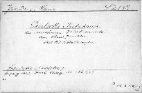 Deutsche Bilhauer des dreizehnten Jahrhundert
