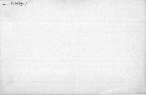 Rozbor básně Ve stínu lípy od Sv.Čecha