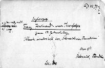Erzherzog Franz Ferdinand.