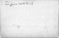 Římské Elegie; Benátské Epigramy