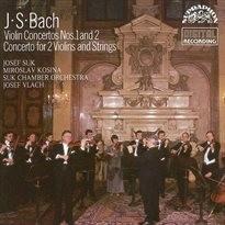 Koncerty pro housle a orchestr