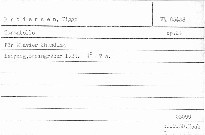 Tarantelle für Klavier zweihändig. Op.24