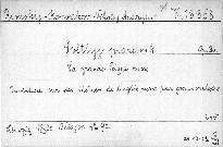 Svetlyj prazdnik, op. 36