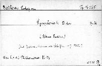 Symphonie 2. D dur, Op. 36