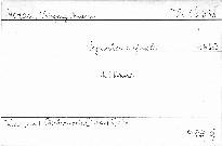 Symphonie g moll, KV 550