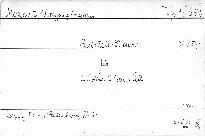 Quintett D dur für 2 Violinen, 2 Violen und Cello, KV 593