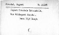 August Stradals Lebensbild