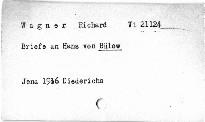 Briefe an Hans von Bülow