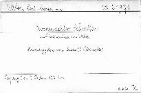 Ausgewählte Schriften von C. M. von Weber